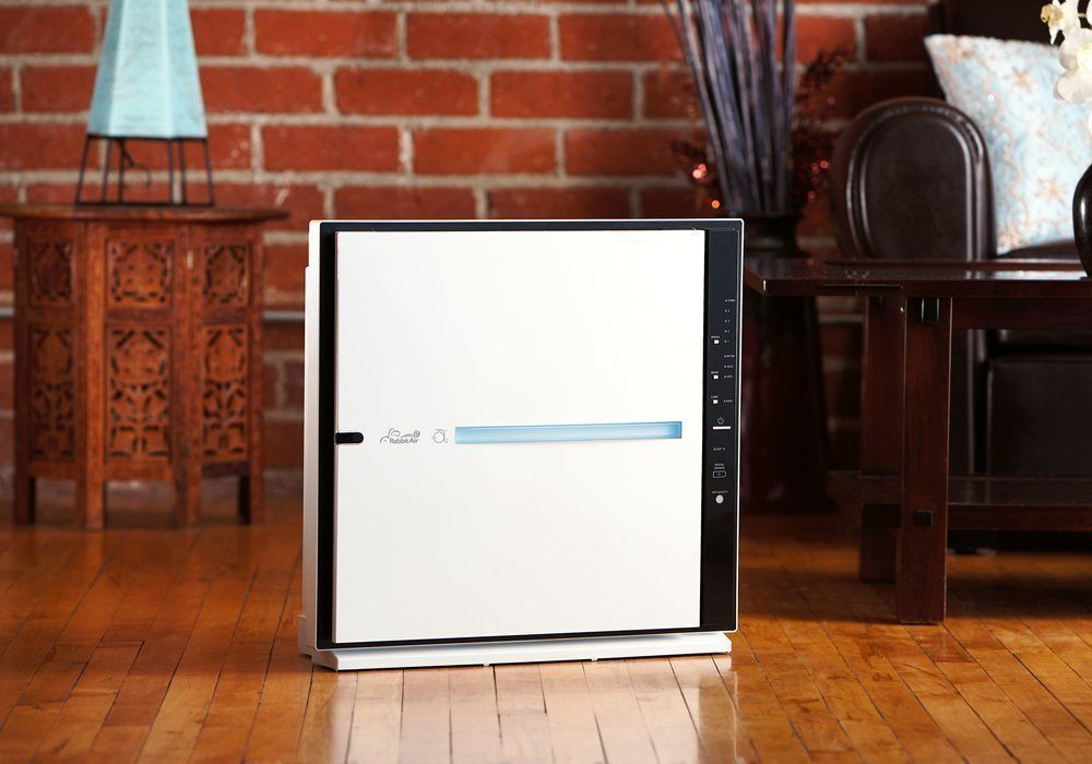 Best HEPA Air Purifier - Rabbit Air MinusA2