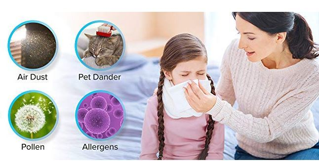 best air purifier for pet hair and dust